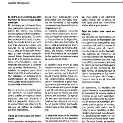 Página 3 Wacota Latino Aficionado