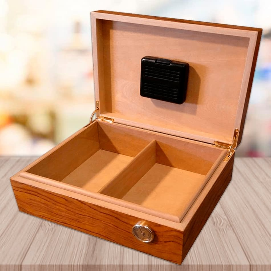 Exquisito humidor model open